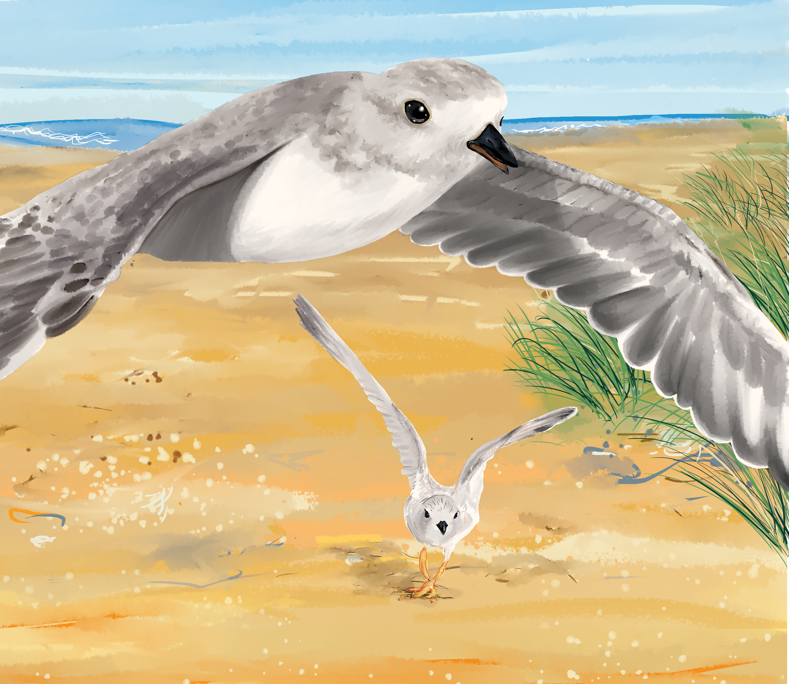 digital illustration example